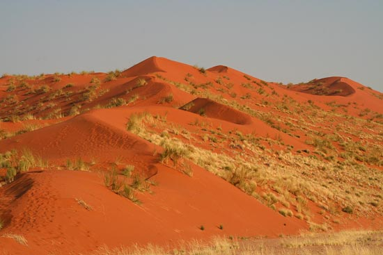 Red star-shaped dunes found at Sossusvlei